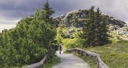 wandern-bayerischer-wald