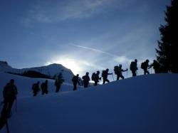 ein-langer-tag-geht-zu-ende-im-bildhintergrund-die-winterstaude