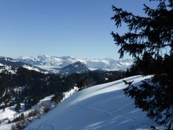 nebelhorn-hochvoegel-vom-feuerstaettenkopf