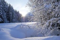 schoenenbach-im-winter