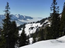 winterstaude-ueber-sibratsgfaell