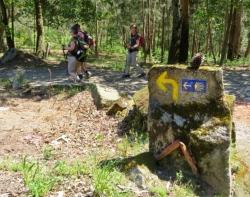 Camino Finisterre / Camino Ingles