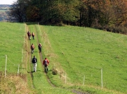 Duitsland Westerwald