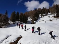 Sneeuwwandelen in Italië - Lüsneralm Dolomieten