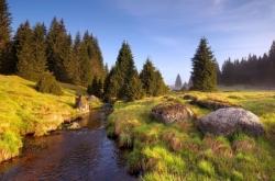 boheemse-woud-nieuwe-wandelroute