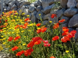 wandelen Sicilië