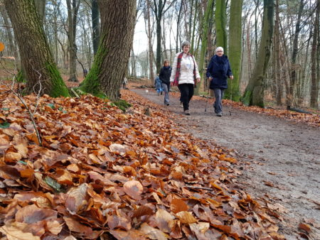 Wandelen rondom Berg en Dal | 4 dagen herfst wandelreis
