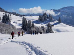 Bregenzerwald sneeuwwandelen