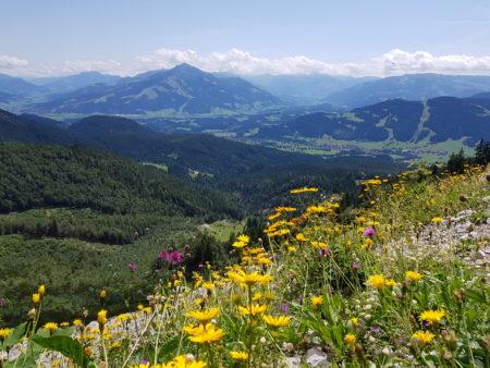Wildschönau wandelen Tirol, Kitzbüheler Alpen