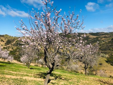 Overwinteren Spanje, Costa Blanca Calpe