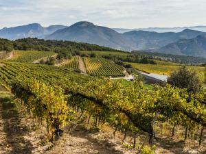Camino Frances - de klassieke pelgrimsroute naar Santiago de Compostella